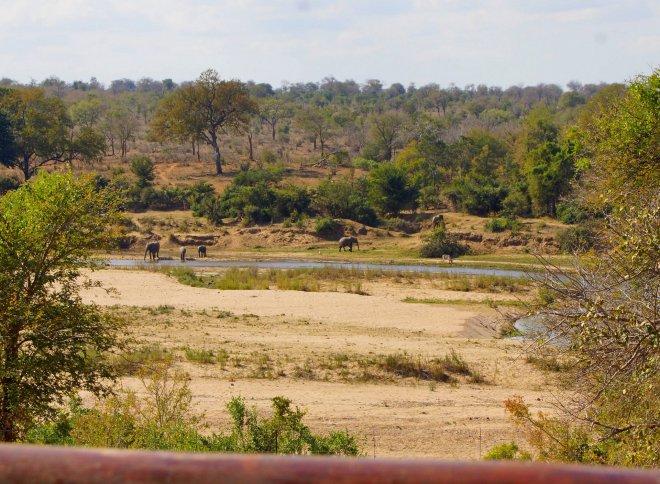 KRSC - river view