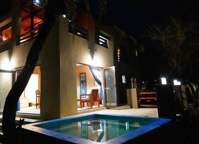 Hippo-front-Night-Marloth-Park-Hippo-House