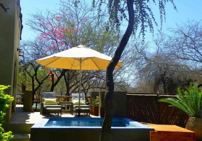 Hippo-pool-2-Marloth-Park-Hippo-House